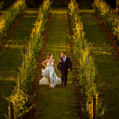 bride and groom running through a vineyard at lightfoot wolfville wedding